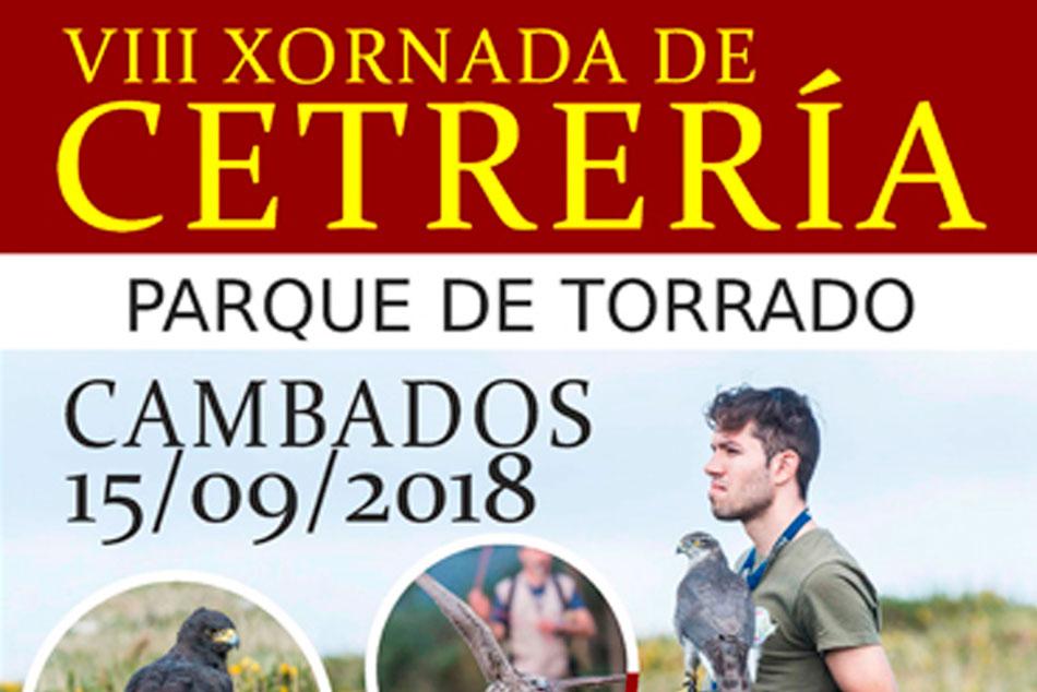 VIII Jornadas de cetrería en Parque Torrado