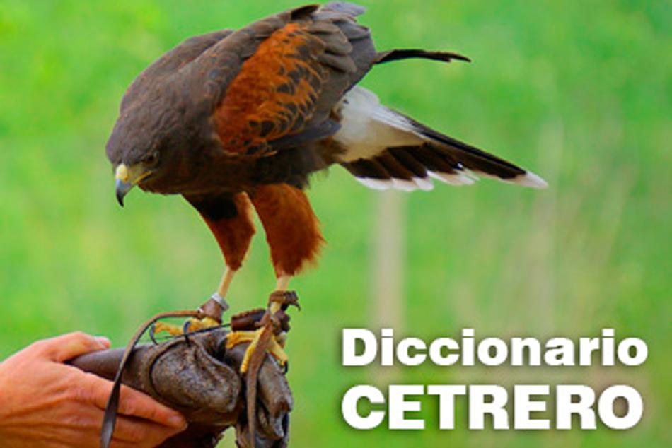 Diccionario de cetrería para principantes