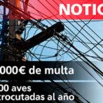 143.000€ de multa