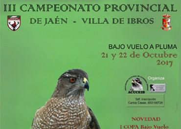 Campeonato provincial de Jaén 2017