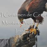 "XVI Certamen de cetrería ""Montes orientales"" de Iznalloz"