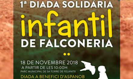 Evento solidario de cetrería
