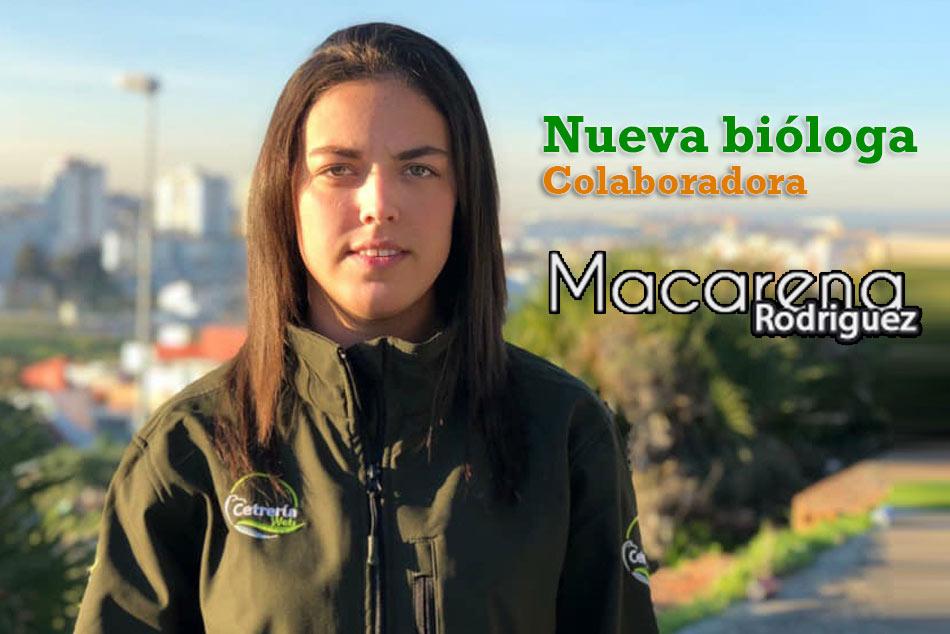 Nueva incorporación a Cetrería Web «Macarena Animaux»