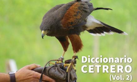 Diccionario de cetrería (Vol. II)