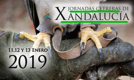 X Jornadas Cetreras de Andalucía, Antequera 2019