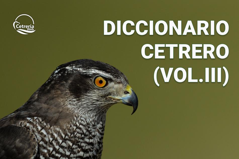 Diccionario de cetrería para principiantes (Vol. III)