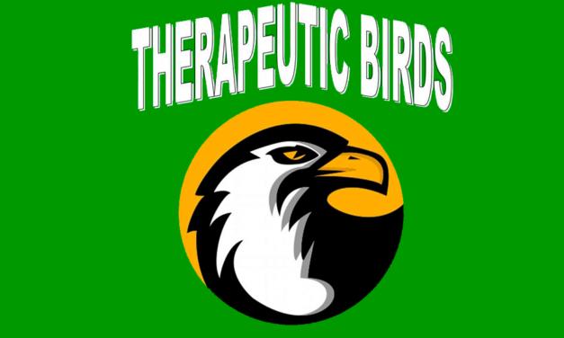 Beneficios de la terapia con aves, ¿lo conocías?