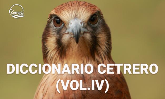 DICCIONARIO DE CETRERÍA PARA PRINCIPIANTES (VOL. IV)